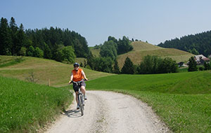 Biking in Emmental